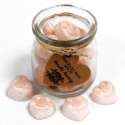 Sojové vonné vosky do aromalampy - Vanilka & Muškátový orech