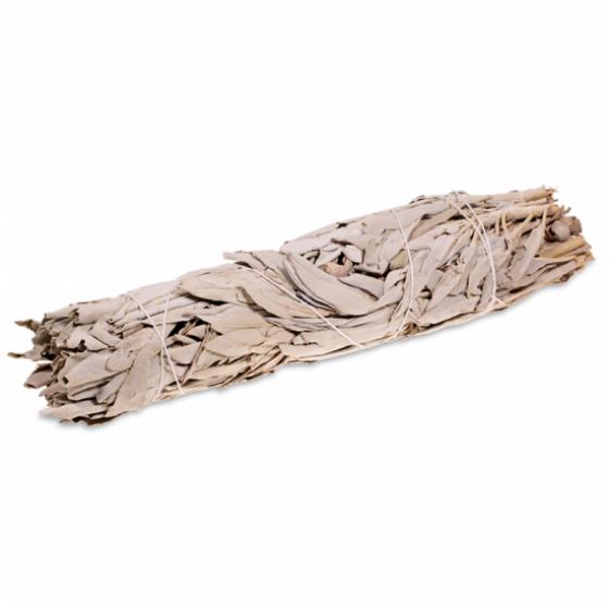 Vykurovadlo - Biela šalvia zväzok L 23cm - nebalený