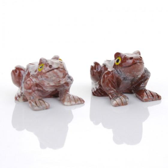 Mramorová žaba - Peru L